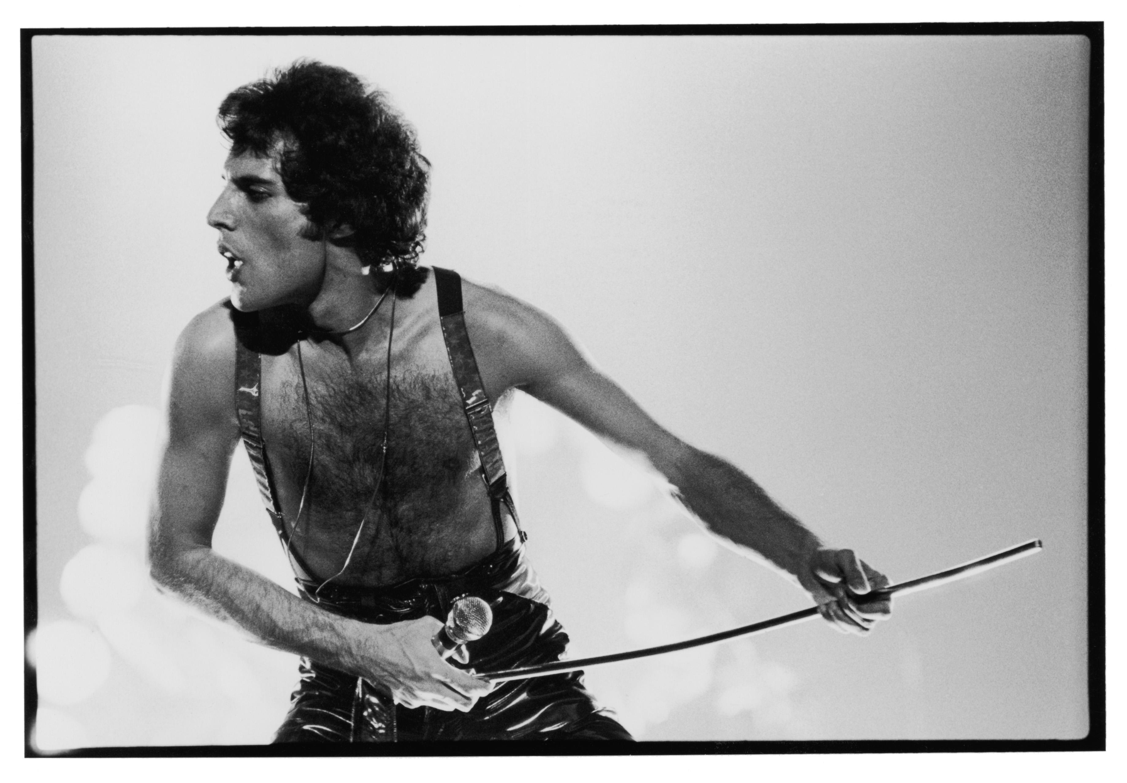 Freddie-Foto-1