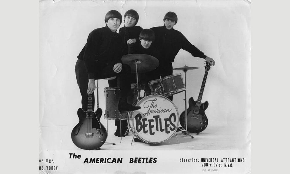 The American Beetles